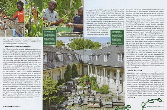 MISEREOR Urban Gardening