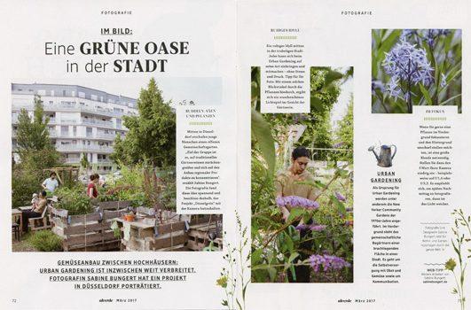 ALVERDE Urban Gardening
