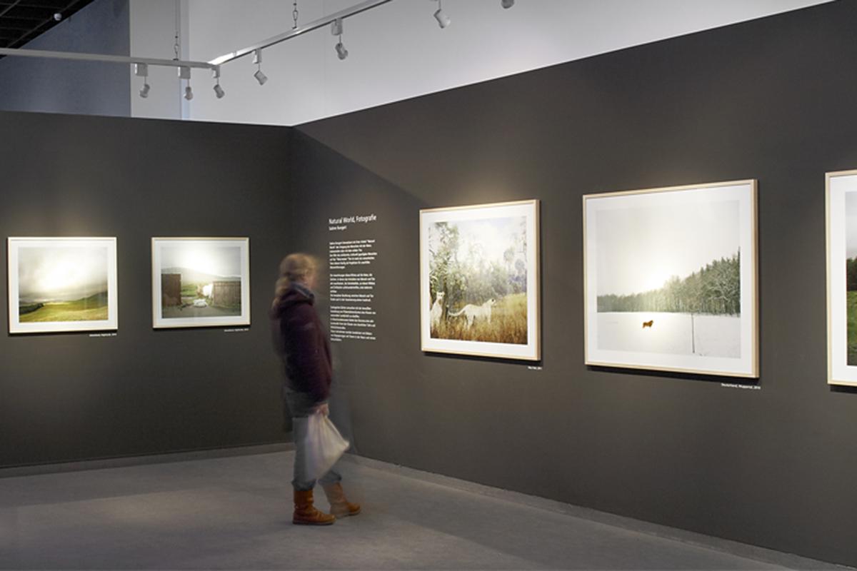 Natural World Ausstellungsräume