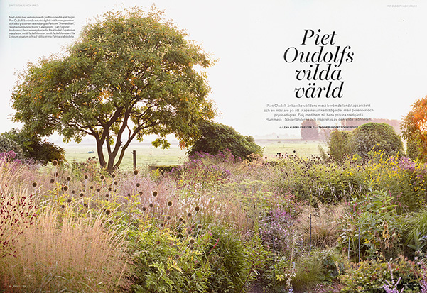 RUM UTE Piet Oudolfs vilda värld